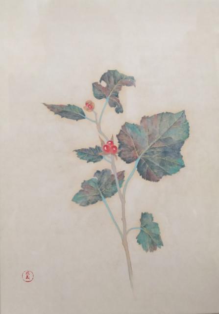 Shigemi Yasuhara, Rubus buergeri, 22.7×15.8cm
