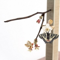 Toru Fukuda, Haruyume (Spring Dream), H43 x 20 x 27 cm