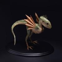 Hajime Emoto, Dracostatum aviscruris, h20cm