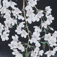 Shinji Ohya, Harukaze (Spring Wind),  27×70 cm