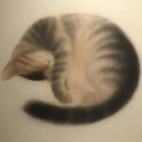 Hao Yumo, Sleeping Cat, 2020, 38×45.5cm