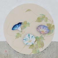 Takako Kikuchi, Morning Glory