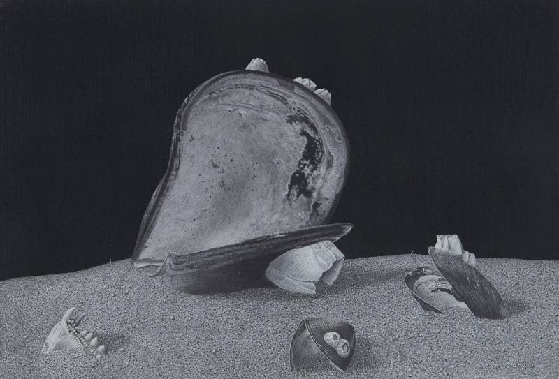 Norio Shinoda篠田教夫「夢のなごり」h14.5×21cm,鉛筆,ストラスモアブリストル紙