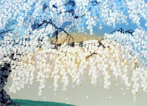 中島千波「神田の大糸櫻」リトグラフ, 38.6cm×53.0cm
