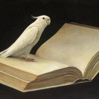 奥村晃史「インコの本」M6, 24.3x40.9