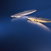 大森暁生「月夜のレターオープナー -Arowana-  緑  x  銀」2014年, ブロンズ、彩色、銀箔, H4.5 x W23 x D5 (cm)