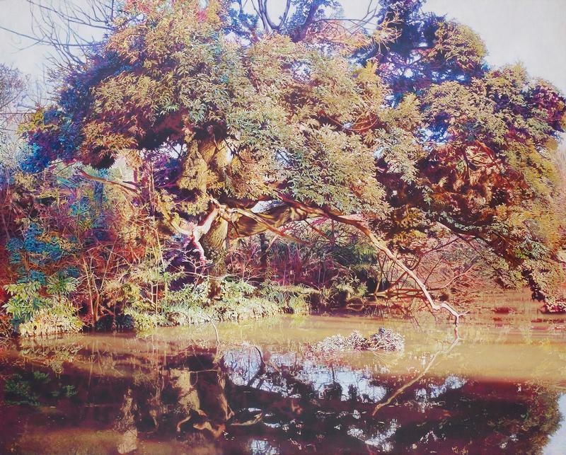 池尻育志「和田堀池の樹」F100