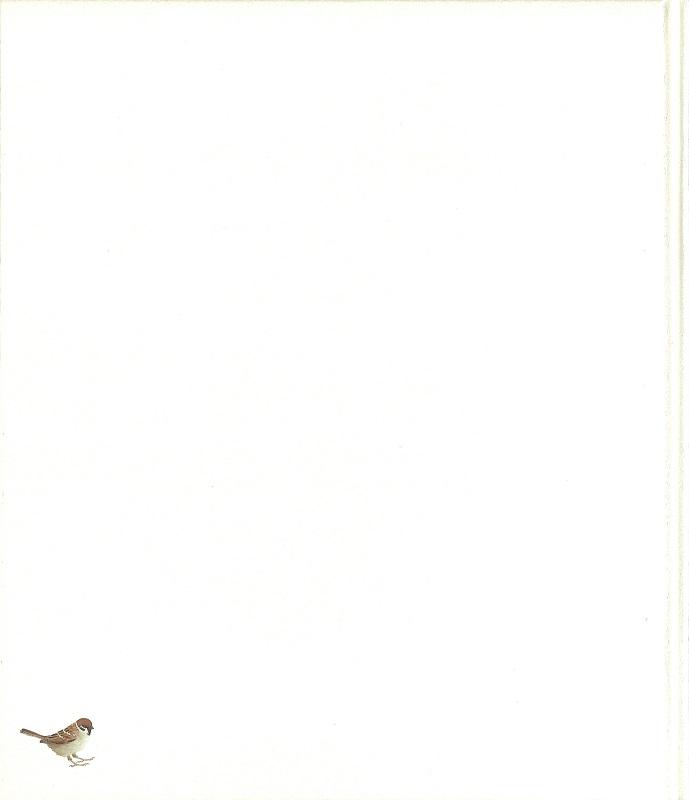 鈴木紀和子 画集(裏表紙)