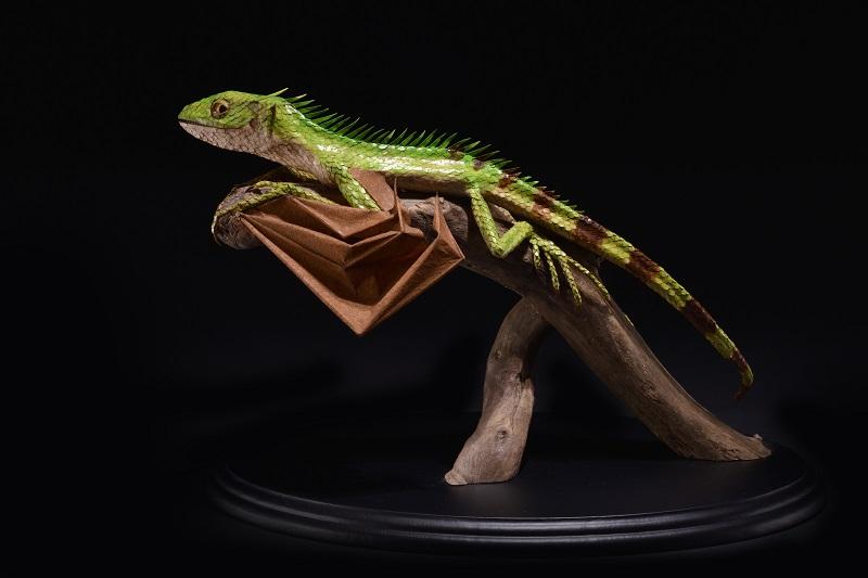 江本創「Draconis  quattuorcornus」21×20×20 cm(Photo by 森脇健夫)