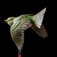 門永哲郎「鳥媒花」2020年、h20×w17×d21 cm、もちの木(台、目の回りの白い羽)、椿材(メジロ、椿)、琥珀(メジロの目)、油彩_2