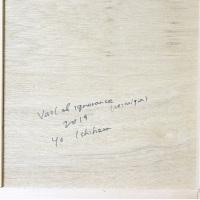 作品名:Veil of ignorance 1(サイン)制作年:2019年サイズ:S6(40×40 cm)素材:綿布・岩絵具・水干価格:79,200円(税込)備考:額なし