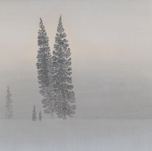 安原成美「雪原に立つ杉」2021年、S10号、紙本彩色